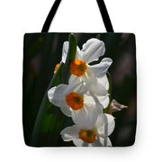 Narcissus Evening Glow Tote Bag