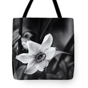 Narcissus In The Shadows Tote Bag