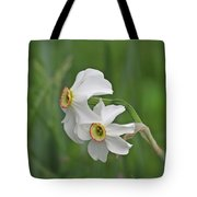 Narcissus Pair Tote Bag