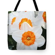 Narcissus Parkdene #2 Tote Bag