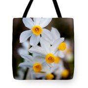 Narcissus Tazetta Tote Bag