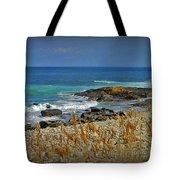 Narragansett Rocky Shore Tote Bag