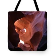 Narrow Canyon Xv Tote Bag