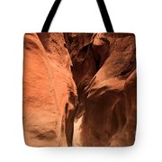 Narrow Red Rock Slots Tote Bag by Adam Jewell