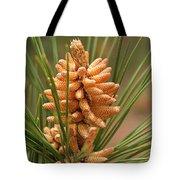 Nascent Pinecone Tote Bag