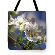 Nashi Pear Tote Bag