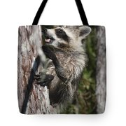 Nasty Raccoon In A Tree Tote Bag