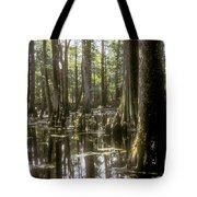 Natchez Trace Wetlands Tote Bag