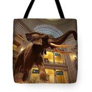National Museum Of Natural History Tote Bag