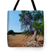 National Park Islands Of Brijuni Tote Bag