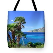 Native Fan Palms In Sant Elm Tote Bag