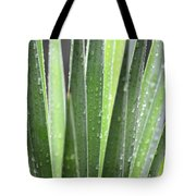 Natural Abstract Autumn Rain Tote Bag