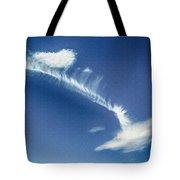 Natural Abstract Creations In Nature No 103 Tote Bag