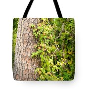 Natural Attachment Tote Bag