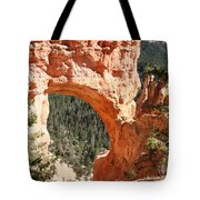 Natural Bridge  Bryce Canyon Tote Bag