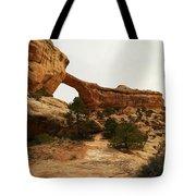 Natural Bridge Southern Utah Tote Bag by Jeff Swan