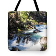 Natural Bridges Tote Bag