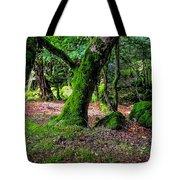 Natural Emeralds II. Wicklow. Ireland Tote Bag