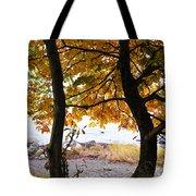 Natural Framing Tote Bag