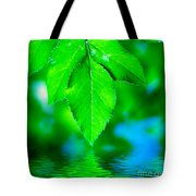 Natural Leaves Background Tote Bag