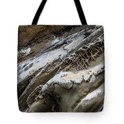 Natural Rock Art Tote Bag