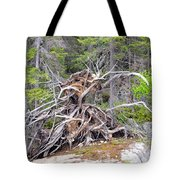 Natural Sculpture Tote Bag