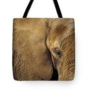 Natural Sepia Tote Bag
