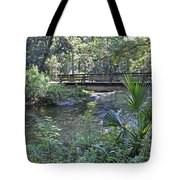Natural Springs Tote Bag