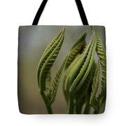 Natural Texture Tote Bag