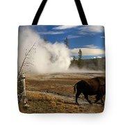 Natural Warmth Tote Bag