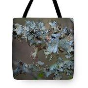 Naturally Abstract Tote Bag