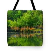 Naturally Reflected Tote Bag