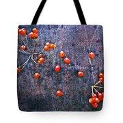 Nature Abstract 49 Tote Bag
