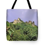 Nature And Medieval Ruins Tote Bag