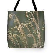 Nature Curls 2013 Tote Bag