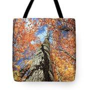 Nature In Art Tote Bag