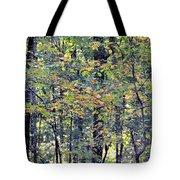 Nature In Autumn 2012 Tote Bag
