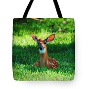 Nature In The Back Yard  Tote Bag
