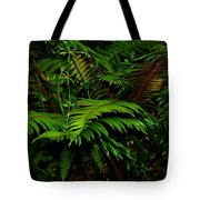 Nature In The Pacific Nw Tote Bag