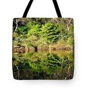 Nature Mirrored Tote Bag