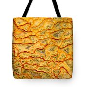 Nature Pattern Iron Oxide Mineral Sediment Crust Tote Bag