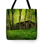 Nature Reclaims Tote Bag