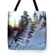 Nature Repeats Itself Tote Bag