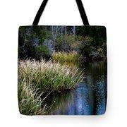 Nature Walk 2 Tote Bag