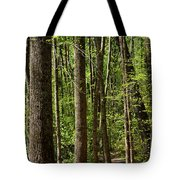 Nature Walk Early Spring Tote Bag