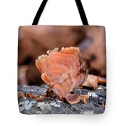 Nature's Abstract 4 Tote Bag