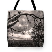 Natures Arch Tote Bag