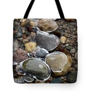 Nature's Artwork 2 Tote Bag