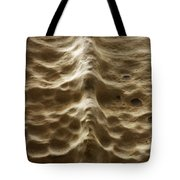 Natures Backbone Tote Bag