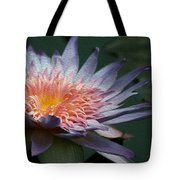 Nature's Baroque Tote Bag